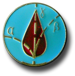 detail of liquidator medal